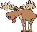 Moose Web Design